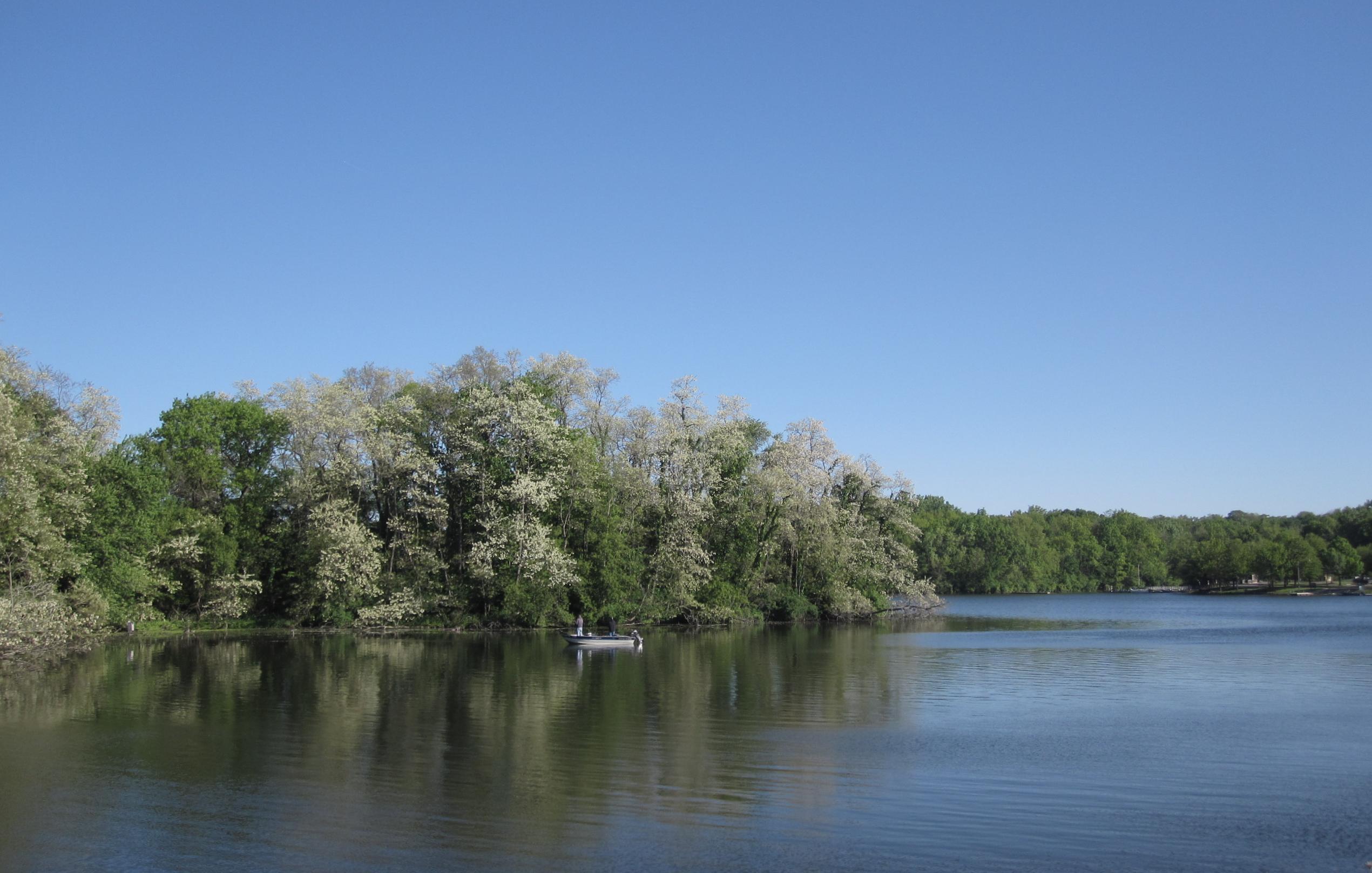 lake-carlton1