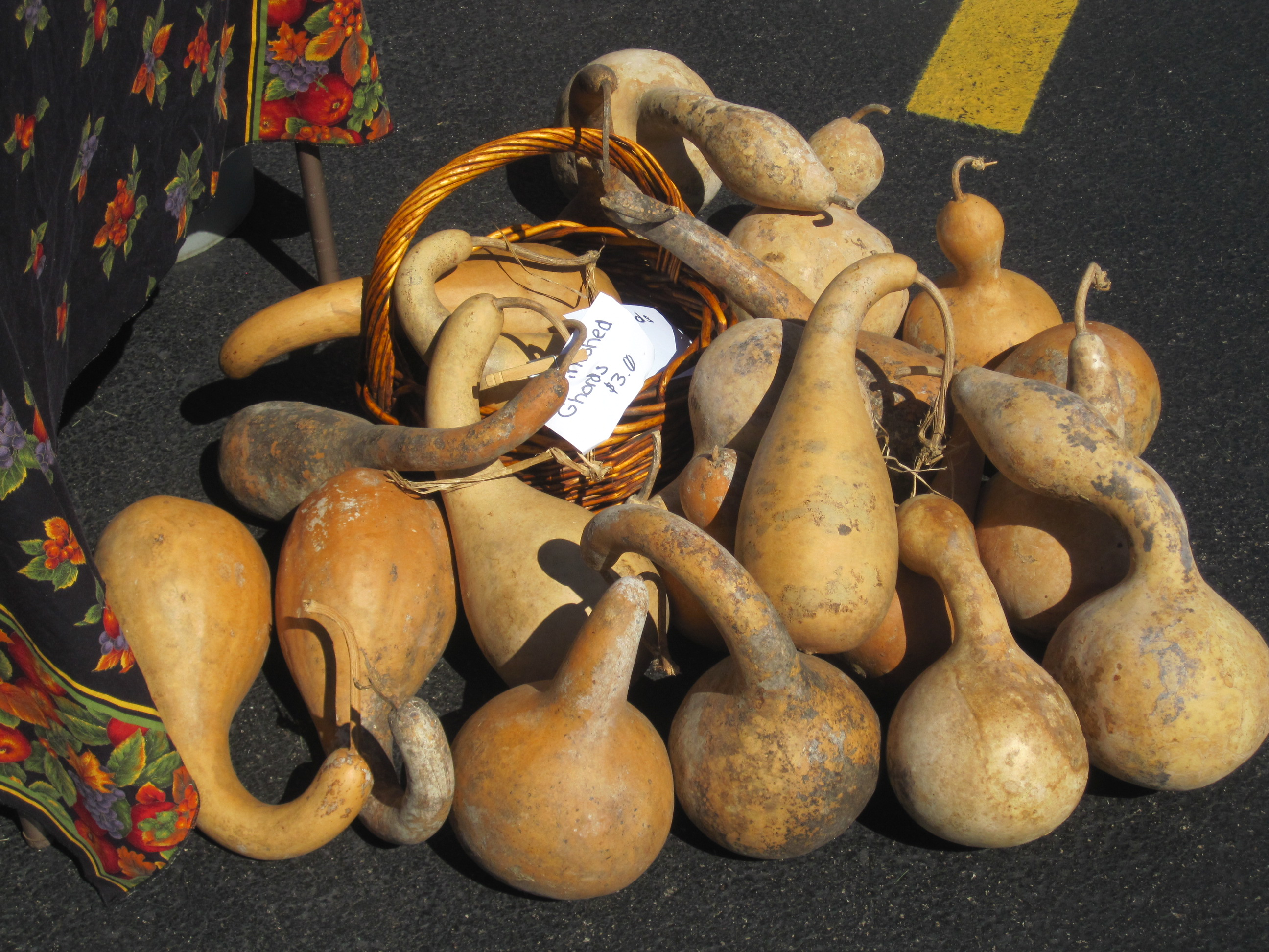 Farmers' Market - gourds
